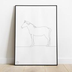 Plakat B2 - koń - Fundacja TARA