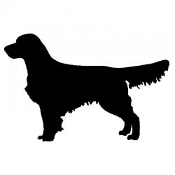 Grafika z podobizną psa Golden Retriever