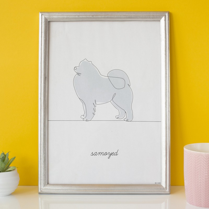 Plakat Samoyed na żółtym tle