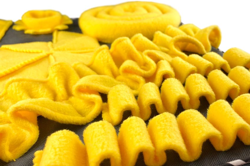 falki na smaczki ze ślimakiem w tle